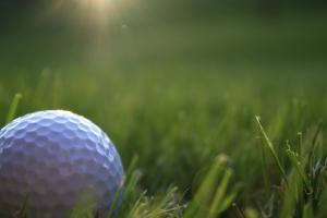 golf-1340146-m
